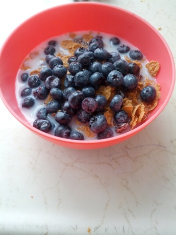 Fruity Life: 2 1/2 cups cinnamon Life cereal, 1-2 cups skim/1% milk, 1 cup blueberries or fruit of your choice.