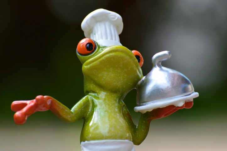 frog-927768_1920