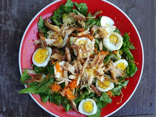 Protein-Packed Salad: – 3 cups lettuce/spinach (any greens) – 1/4 cup shaved carrots – 2 hard boiled eggs, peeled and sliced thin – 1 chicken breast, cooked (mine was marinated in soy and oil! yum!) – 1/4 cucumber, sliced thin – salt and pepper to taste – 2 tbsp. ginger dressing